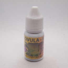 Ovula B Drop Burung 10 ml...